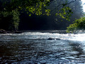 Chattooga River June 2007